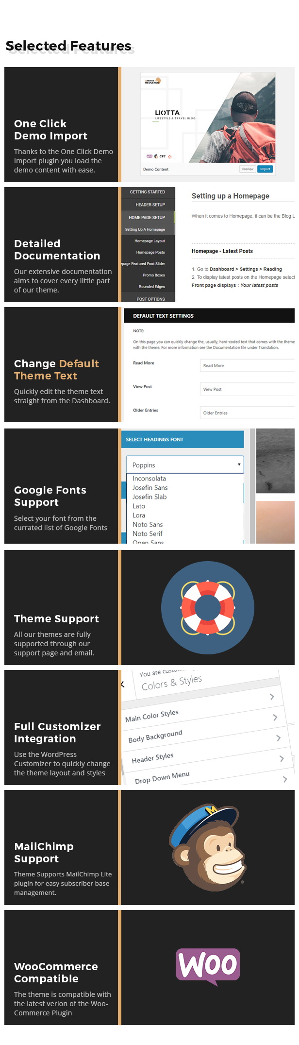 features-list-2 Liotta - a Responsive Blog Theme For WordPress theme WordPress